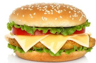 汉堡包用英语怎么说呢(汉堡包用英语怎么说)