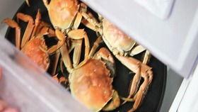 海蟹怎么保存(螃蟹保存冷冻还是冷藏)