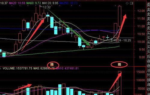 一个股票的上涨下跌是什么原因导致的?