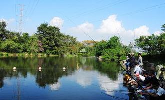 冬季孟良河那个地段可以钓鱼