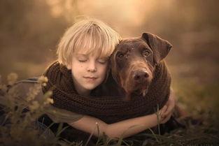 adi-可爱的小女孩shesek-一只盲猫adhd-天真的小男孩efi-高龄繁殖犬杜宾