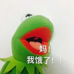 表情 青蛙表情包 妈,我饿了 青蛙 表情包 被子 新浪网 表情