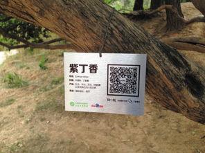 ...连名贵植物有了二维码 身份证
