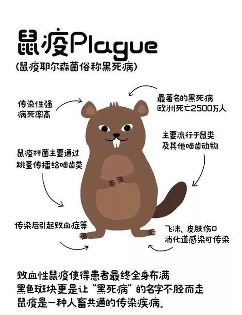 我国鼠疫疫源地分布广泛,疫源地类型众多,今年8月内蒙古就分别有一例肠型鼠疫病例和一例腺鼠疫病例的疫情.