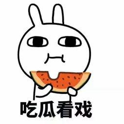 为什么吃着八卦的瓜,吃着吃着就成了 砖 家