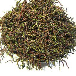 茶叶根的作用