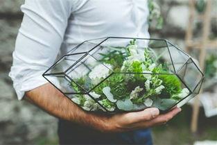 永生花-玻璃下景观