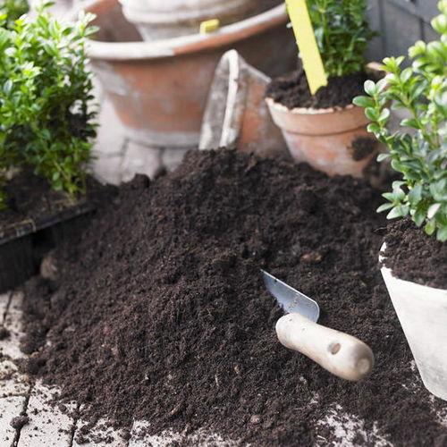 椰糠养花的营养土好吗