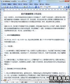 小学资产分析报告范文(无形资产分析报告)