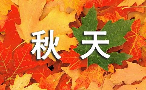关于秋的话题作文