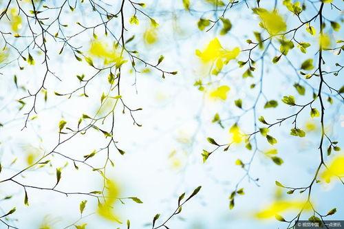 关于季春的诗句