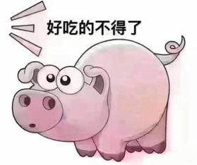 表情 摸你猪头表情包 猪头表情包图片大全 摸一下猪的小人表情包 笑摸猪头表情 ... 表情