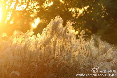 无锡冬日贡湖湾