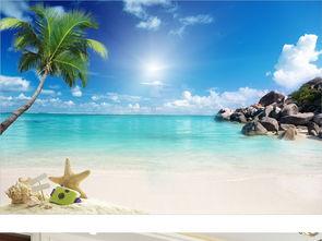 美丽海边海滩风景 15669357 现代简约电视背景墙