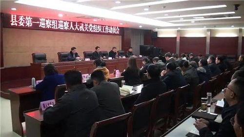 人大机关党组织巡察工作自查报告