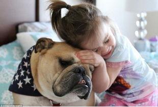 美国两岁女孩与斗牛犬形影不离成好友