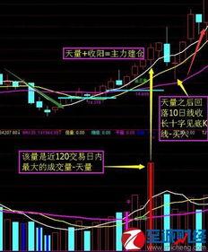 股票基础知识 连续涨停 股票怎么买入
