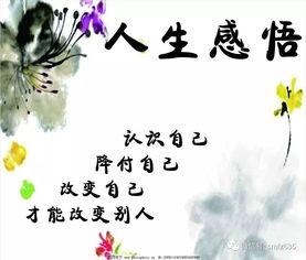 最经典的哲思禅语,道尽人生哲理  佛家静心禅语四字