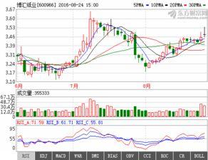 博汇纸业(600966)历史最高股价是多少?
