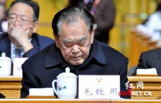 原全国政协副主席毛致用出席会议。