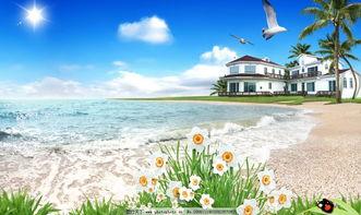 超清海边风景