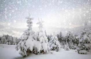 描写冬天的俗语_描写冬天很冷的俗语