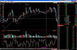 大家分析股票都看什么?