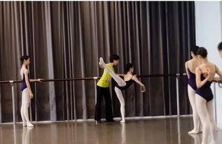 云南有舞蹈专业的本科大学有哪些 学校大全