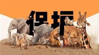 保护野生动物的古诗词