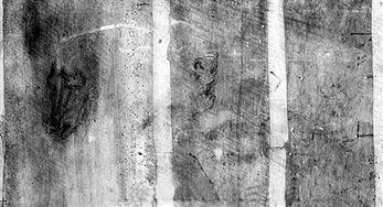 石狮日报数字报 达 芬奇一名画背面发现三幅素描