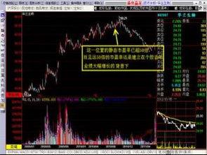 股票的特性分析