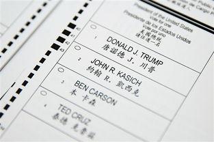 纽约州迎来总统初选