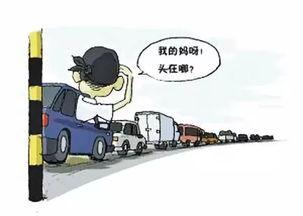 河南发布十一出行攻略看避堵指南省内旅游不堵心