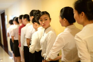 天津航空招空姐在校女大学生竞相应聘