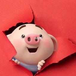 吕猪宝宝女起名