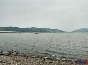... 水库 河流 四海钓鱼网,渔我同行
