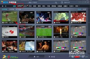 国外什么软件可以看世界杯直播