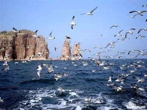 长岛百度旅游攻略
