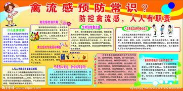 绵竹sk5禽流感防治常识