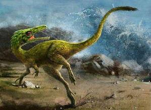 养恐龙(全民养恐龙)