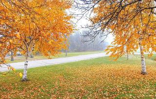 描写秋天的句子写写其他三个季节