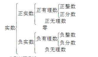 有理数和无理数的定义(pp有理抄数)