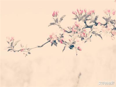 海棠诗句(关于海棠花的诗句)