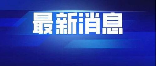 张文宏称上海新增病例仍属散发病例