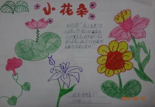 关于花卉的手抄报知识