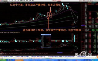 怎样看懂股票图?