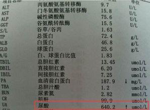 中医百科对尿酸论证论治