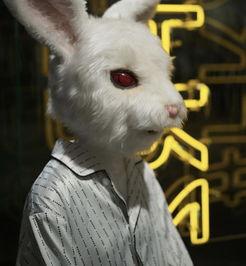 陈冠希带这只 污兔子 ,在香港充当起 禁烟 使者
