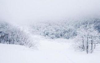 大雪纷飞的季节,去东北都可以做什么