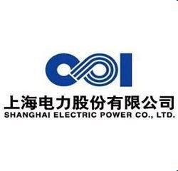 上海電力這只股票怎么樣?這家公司又怎么樣?